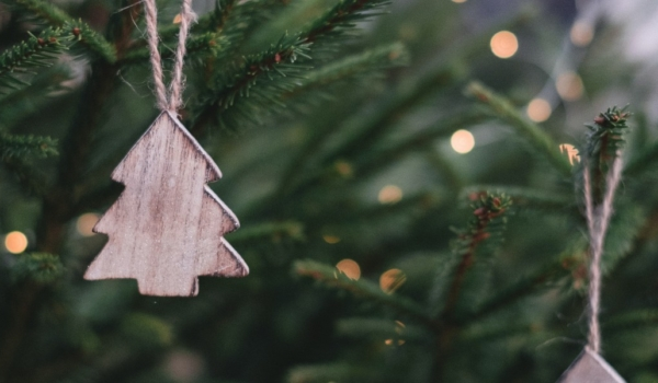 Kerstbomen kopen bij het ss Rotterdam
